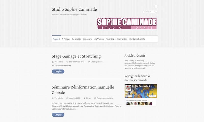 Site web : Sophie Caminade studio